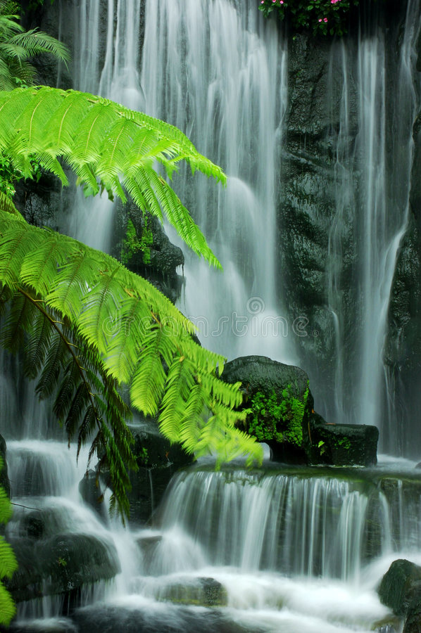 Free Garden Waterfalls Royalty Free Stock Images - 8971009