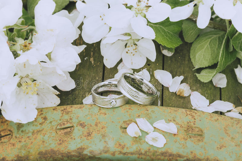 Garden Wedding Rings stock image