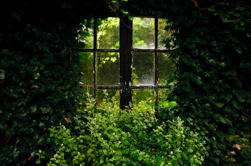 Garden window royalty free stock photos
