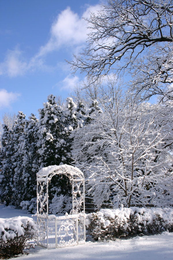 Download Garden in Winter stock photo. Image of clouds, freeze, white - 505628