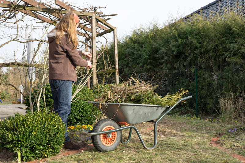 Download In the garden stock image. Image of spring, woman, waste - 90060673