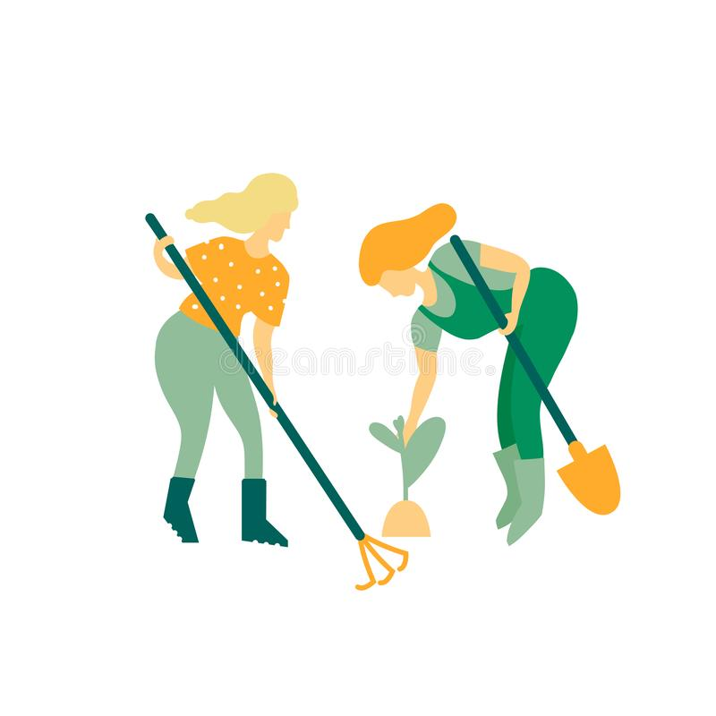 Women gardeners engaged in tree planting. Watering and cleansing plants. Work spring and summer season. Vector illustration in flat style royalty free illustration