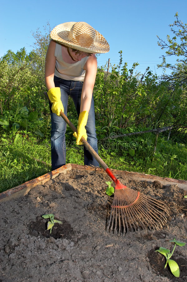 Garden work stock photography