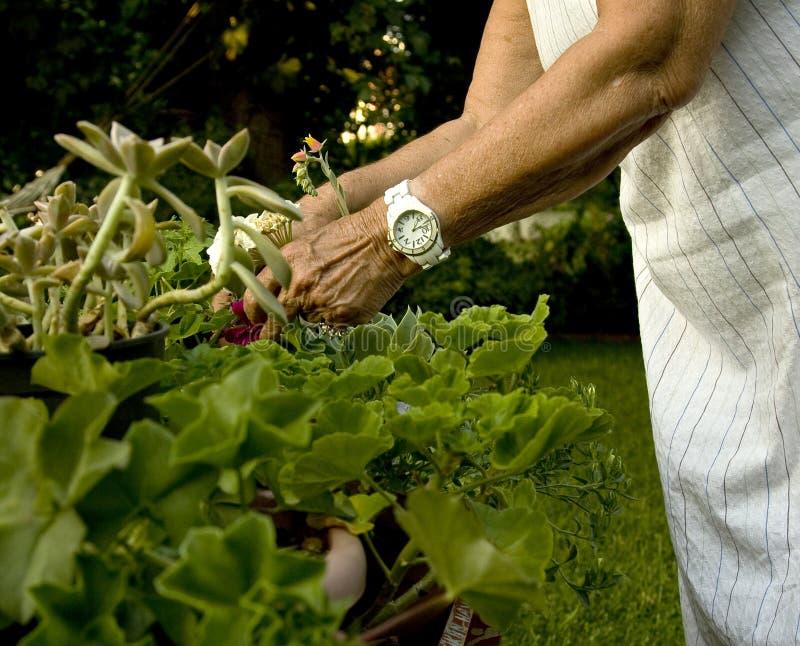 Garden Work Royalty Free Stock Photo