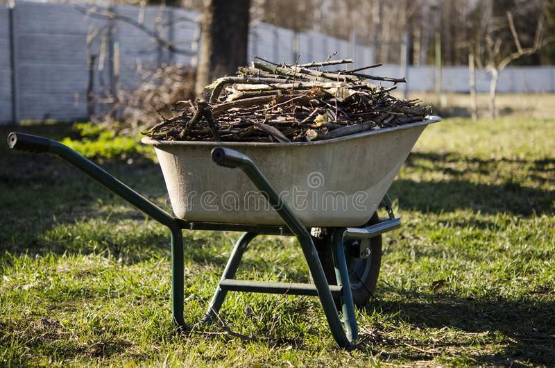 Garden work. Pruned branches of young trees lie in a wheelbarrow, which stands in the garden royalty free stock photos