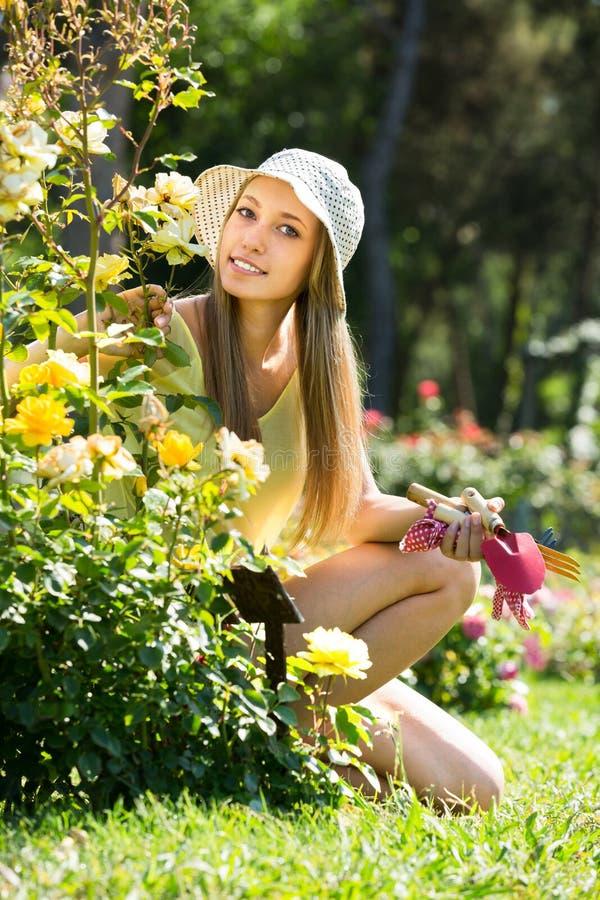 Gardene fêmea perto do arbusto imagem de stock