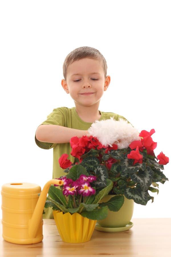 Download Gardener Stock Image - Image: 4032581