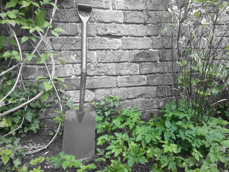 gardener fotos de stock royalty free