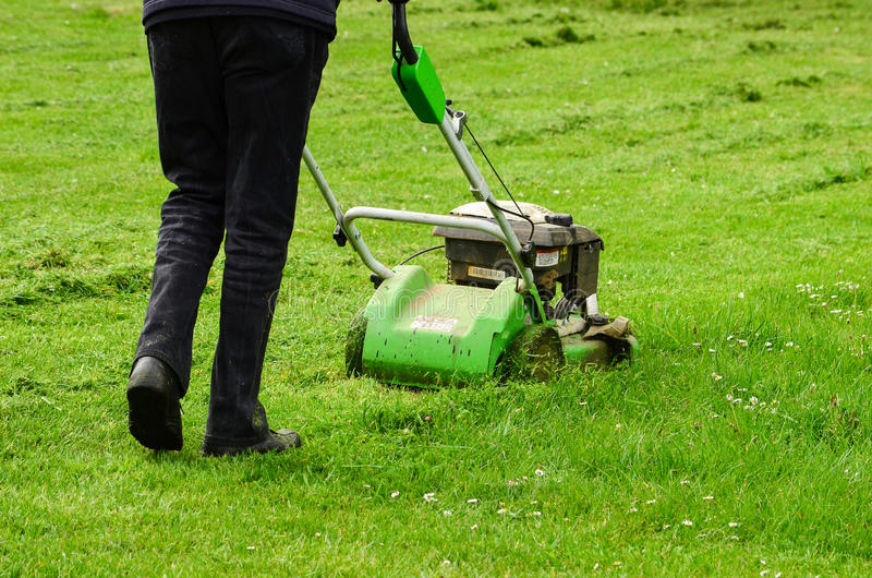 Gardener in action. Mowing green grass lawn with push mower royalty free stock photography