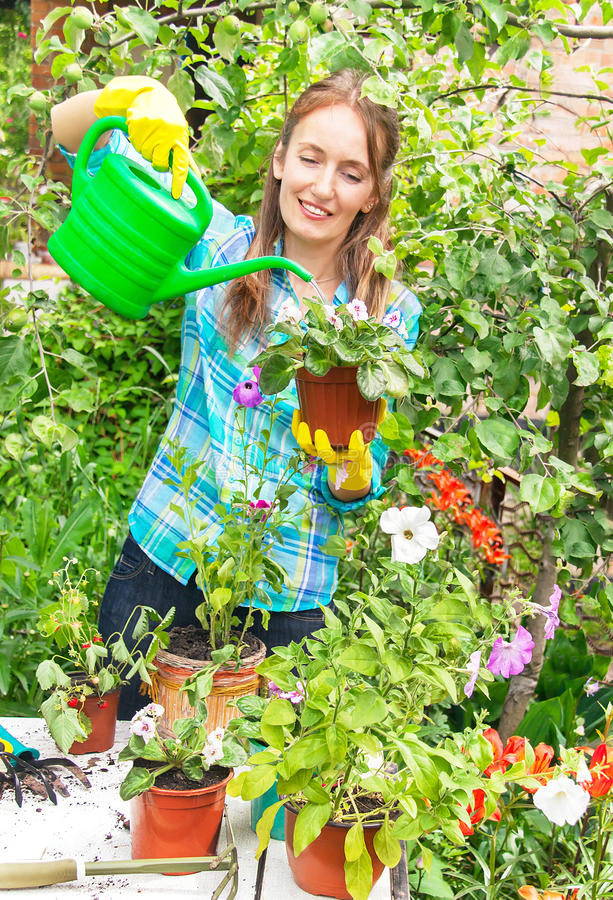 Gardener active happy girl is holding and watering pot of flower stock photo
