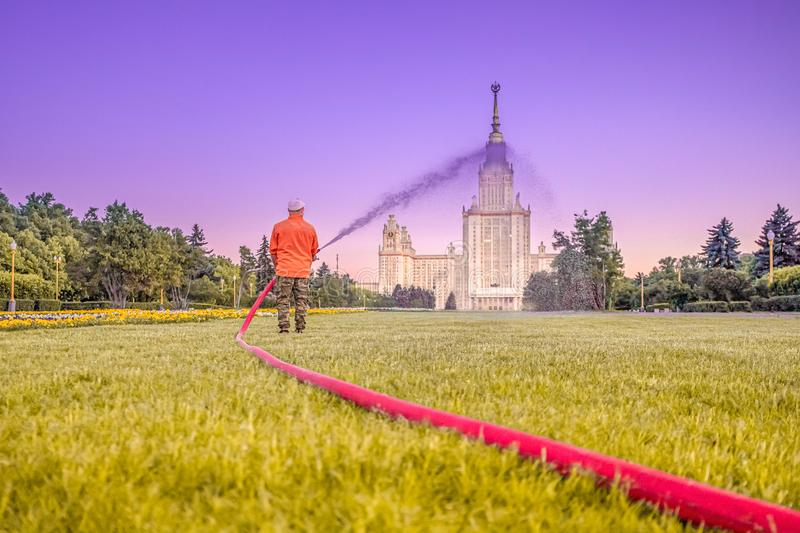 Gardener at dusk from a fire hose watering flower beds on the Sparrow Hills in Moscow stock image