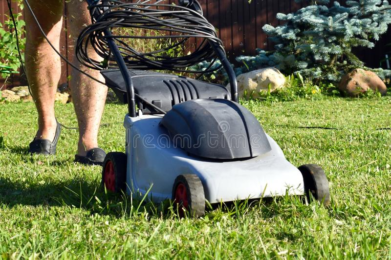 Gardener with the electrician-mower. Working lawn-mower with grass in garden stock photography
