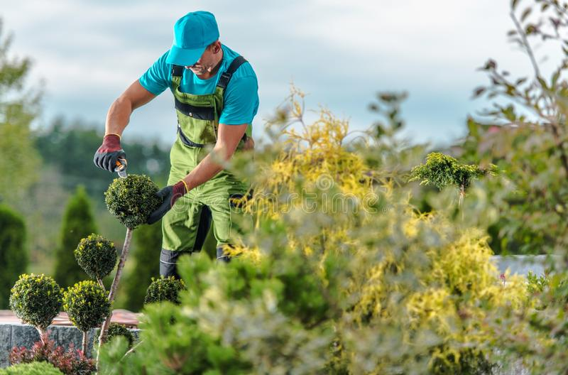 Gardener Maintenance Job royalty free stock photo