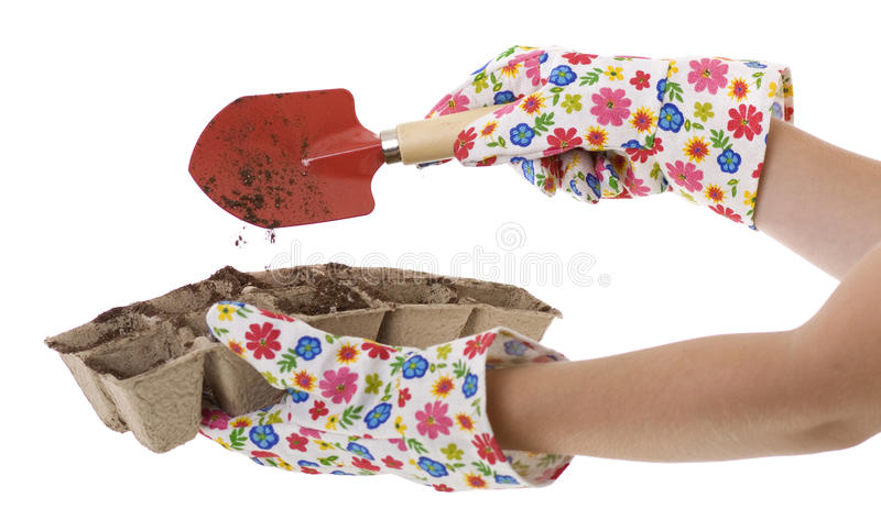 Download Gardener, Gloves, Shovel Putting Soil Into Pots Stock Photo - Image: 14060578