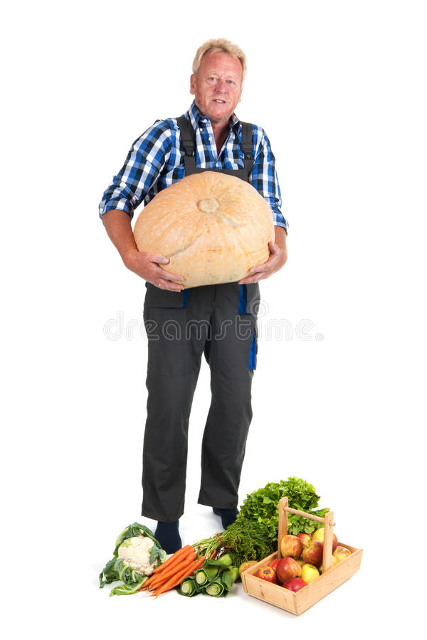 Download Gardener With Harvest Royalty Free Stock Images - Image: 26795379