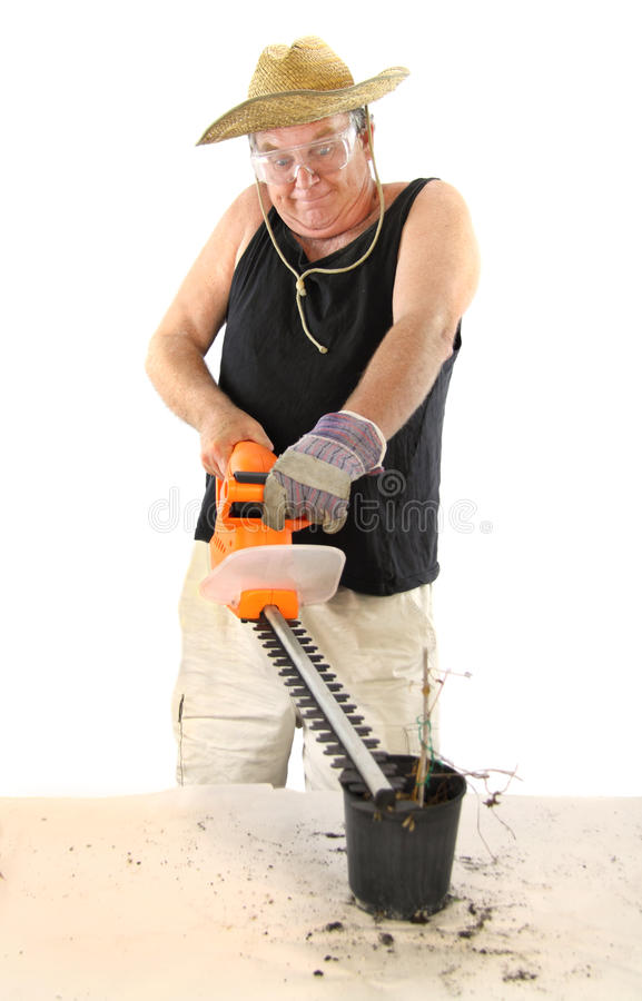Download Gardener With Hedge Trimmer Stock Image - Image: 11034277