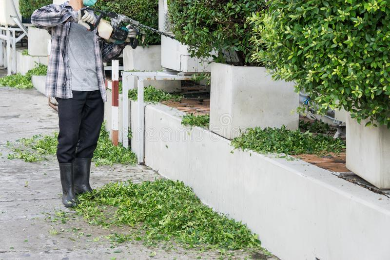 Gardener with his gasoline hedge trimmer in action royalty free stock photo