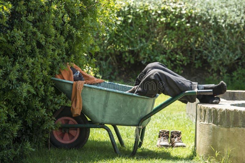 Man sleeping in wheelbarrow, gardener resting in shadow stock images