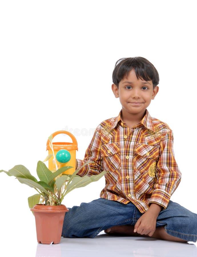 Gardener Little Boy Watering Plant Stock Photography