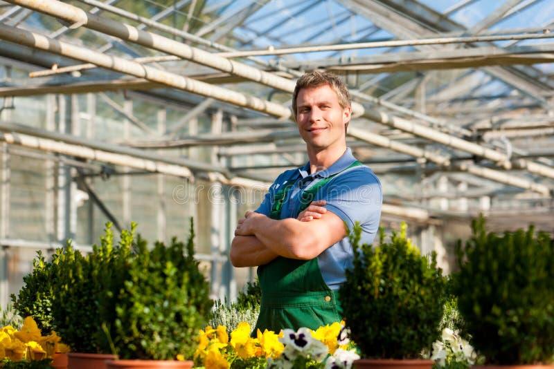 Download Gardener In Market Garden Or Nursery Royalty Free Stock Photo - Image: 21714295