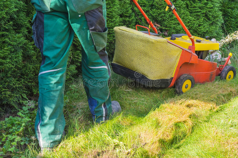 Gardener mowing the lawn royalty free stock images
