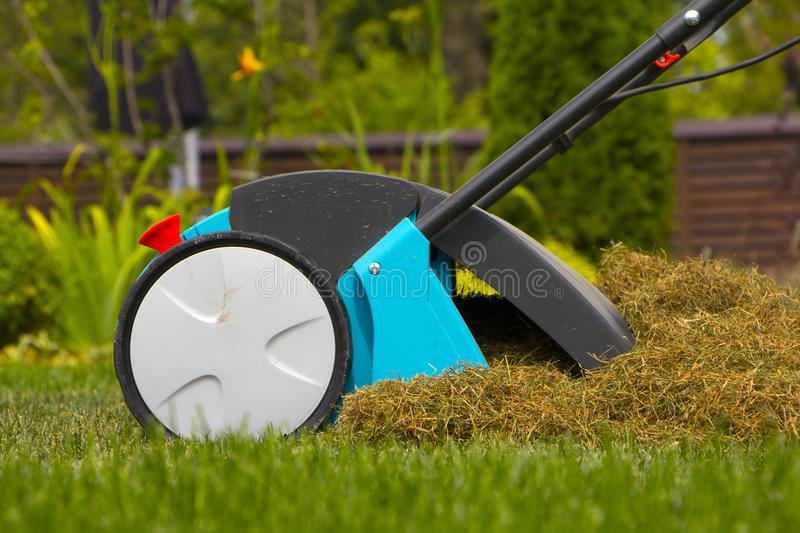 Gardener Operating Soil Aeration Machine on Grass Lawn.  royalty free stock photo