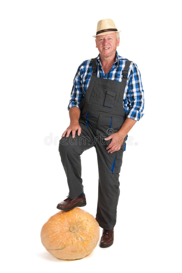 Download Gardener with pumpkin stock photo. Image of checkered - 26795388