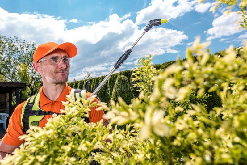 Gardener Spraying Trees stock photos