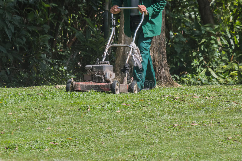 The gardener is using a lawn mower stock image