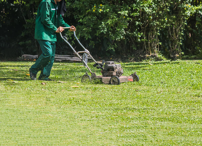 The gardener is using a lawn mower royalty free stock image