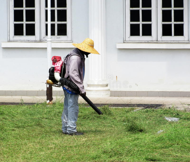 Gardener Using Leaf Blower On Freshly Cut Lawn. Man using a leaf blower to collect freshly cut grass into a pile for disposal later stock photos