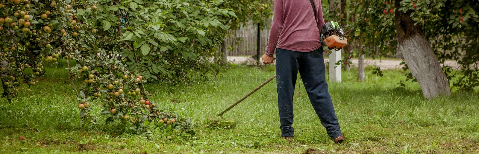 Gardener using machine cutting green grass in garden. Garden equipment. Young man mowing the grass with a trimmer stock image
