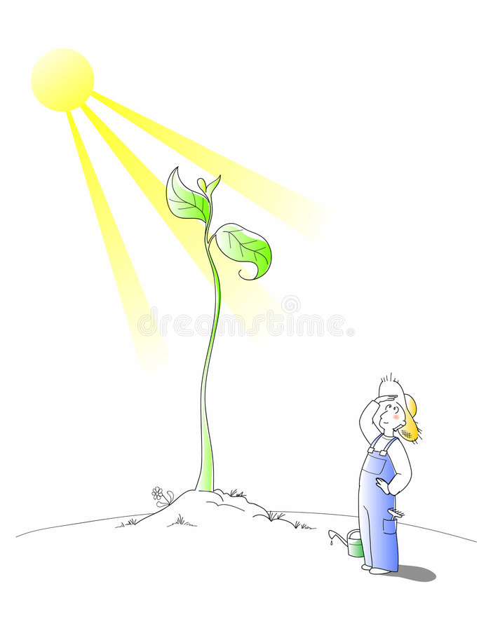 Free Gardener - Vector Cartoon Stock Photo - 8799730
