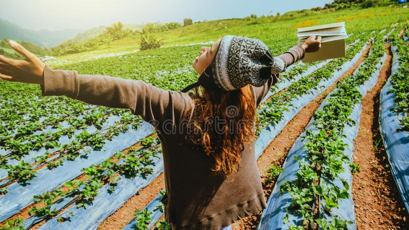 Gardener woman asian. education strawberry in the farm. On the Moutain.  At summer stock image