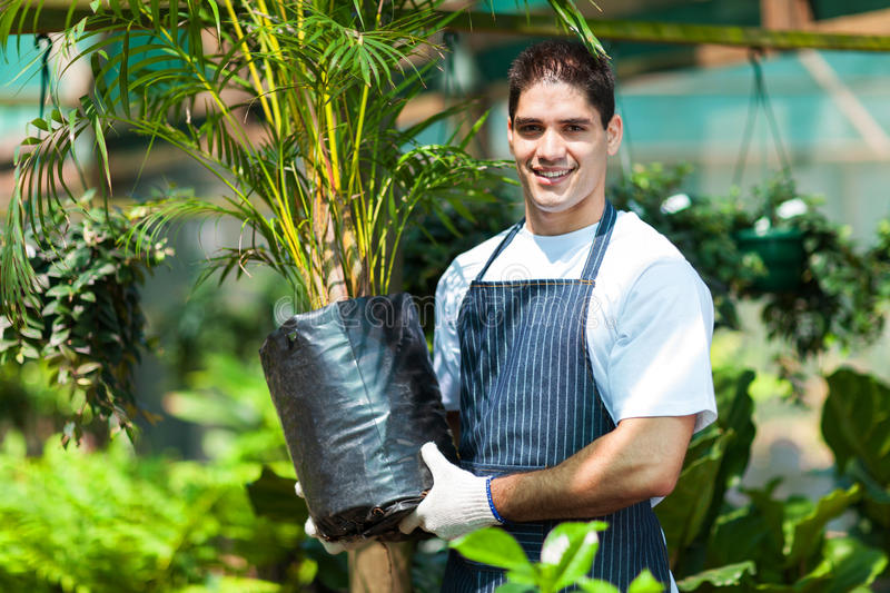 Gardener working in nursery stock photo