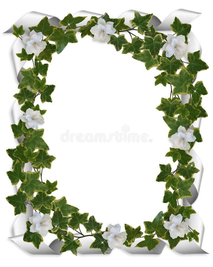 gardenia rabatowy bluszcz ilustracja wektor