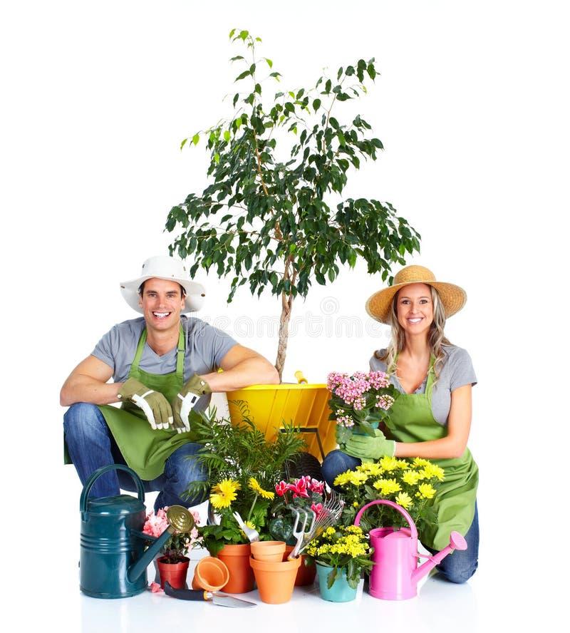 Download Gardening stock photo. Image of barrow, botanical, white - 18546012