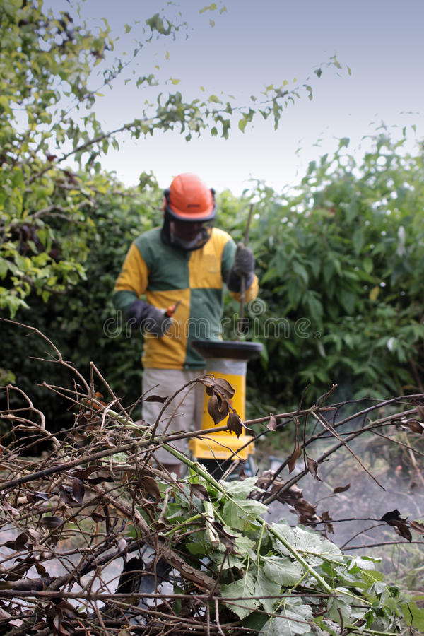 gardening lizenzfreie stockfotos