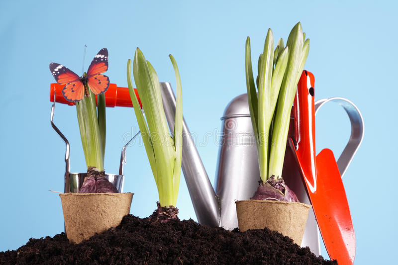 Download Gardening Concept! Royalty Free Stock Photos - Image: 18574298