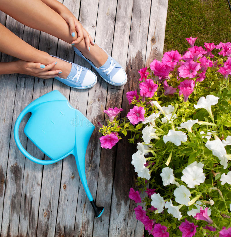 Download Gardening concept stock photo. Image of beautiful, greenery - 32471530