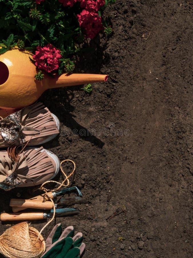 Gardening - Equipment For Gardener With Flowerpot geranium. Copy space stock images