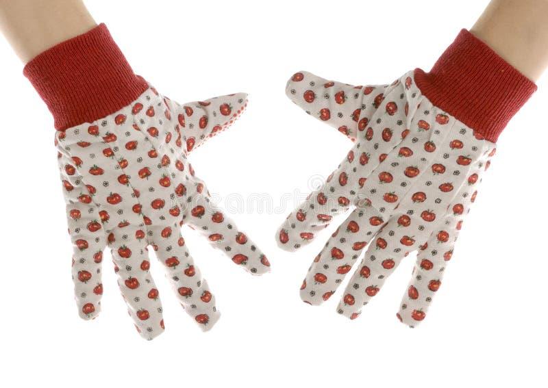 Download Gardening gloves stock photo. Image of industrial, outdoor - 15407638