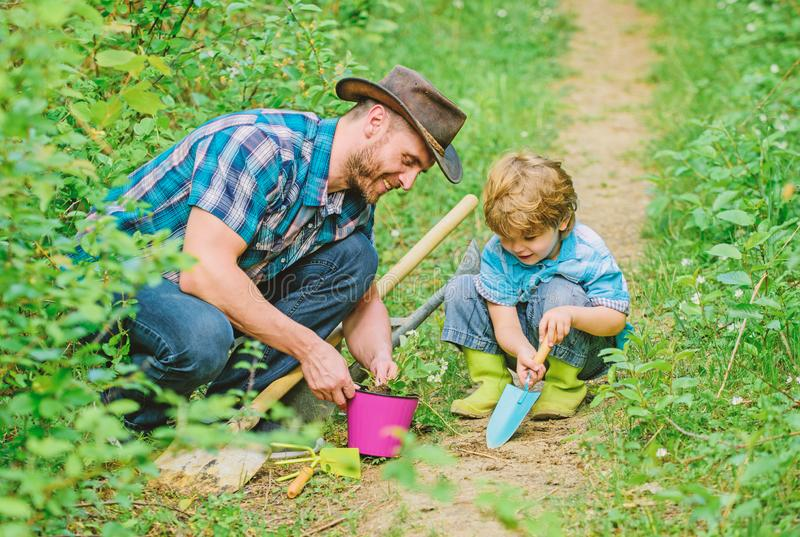 Gardening hobby. Dad teaching little son care plants. Spring gardening routine. Planting flowers. Little helper in. Garden. Farm family. Little boy and father royalty free stock image