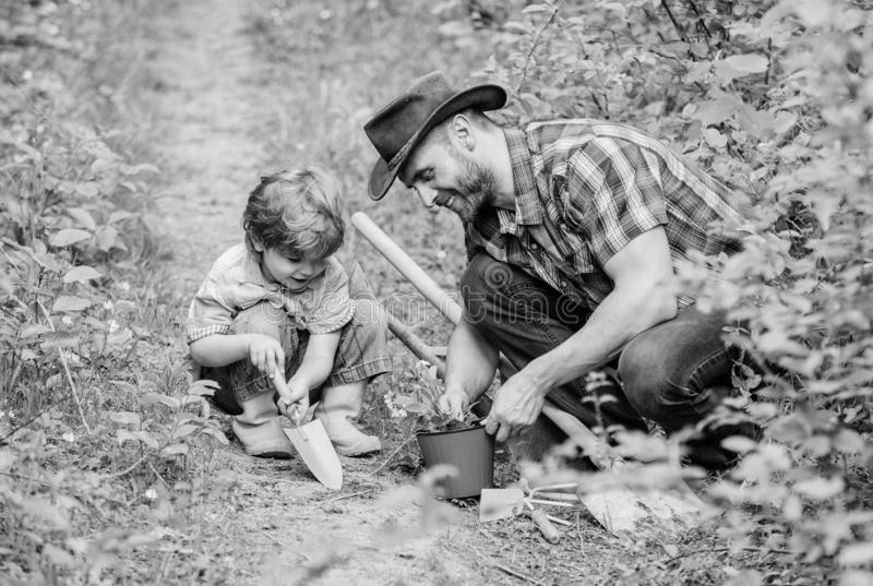 Gardening hobby. Dad teaching little son care plants. Spring gardening routine. Planting flowers. Little helper in. Garden. Farm family. Little boy and father stock image