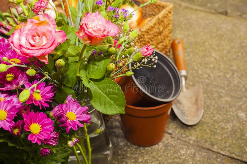 Gardening with home grown organic vegetables and flowers. Grown on the allotment for healthy living and good food. living the country life and getting your 5 a royalty free stock photography