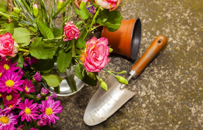 Gardening with home grown organic vegetables and flowers. Grown on the allotment for healthy living and good food. living the country life and getting your 5 a royalty free stock image