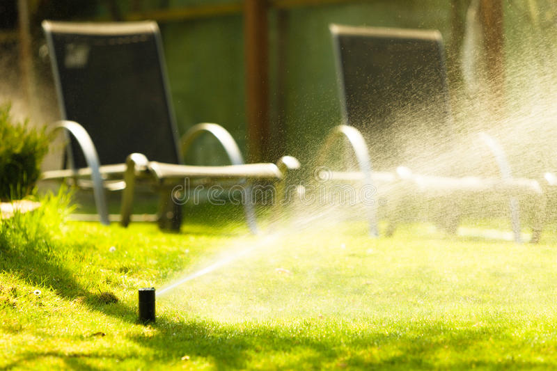 Gardening. Lawn sprinkler spraying water over grass. Gardening. Lawn sprinkler spraying water over green grass. Irrigation system - technique of watering in the royalty free stock images
