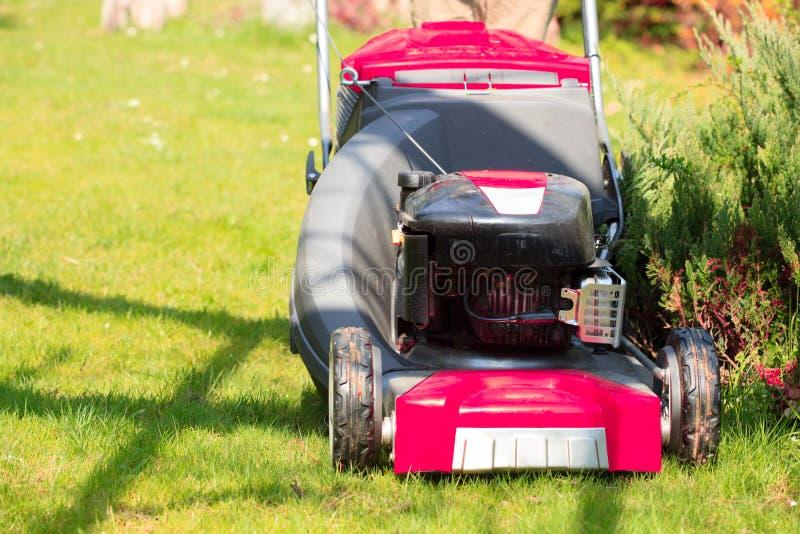 gardening Mähender grüner Rasen mit rotem Rasenmäher lizenzfreie stockbilder
