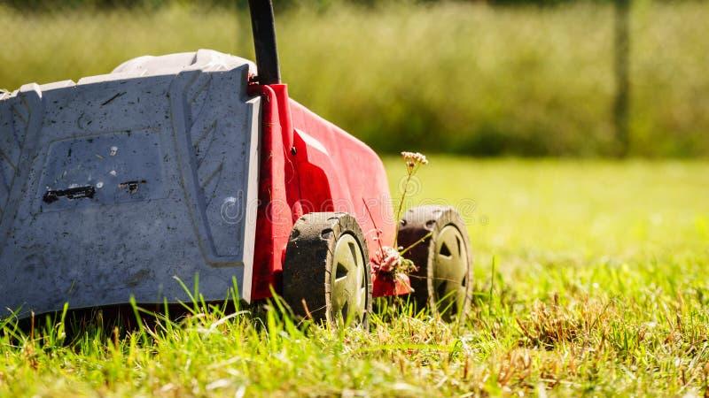 gardening M?hender Rasen mit Rasenm?her stockfoto