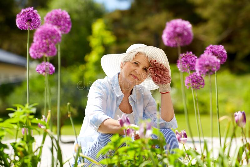 Tired senior woman with flowers at working garden stock photography